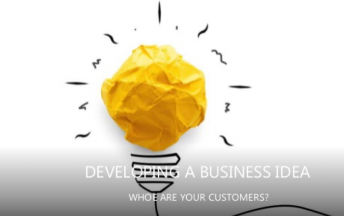 Developing a business idea